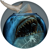 Up to $300 PPS